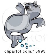 Cute Little Seal Pup Swimming In Water Clipart Illustration
