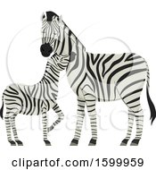 Clipart Of A Mother Mare And Foal Zebra Royalty Free Vector Illustration