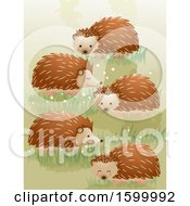 Group Or Array Of Hedgehogs