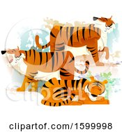 Group Or Ambush Of Tigers