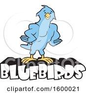 Muscular Blue Bird School Mascot Over Text