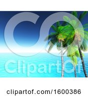 3d Seascape With Palm Trees