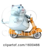 July 15th, 2018: Clipart Of A 3d White Kitty Cat Riding A Scooter On A White Background Royalty Free Illustration by Julos