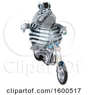 3d Zebra Biker Riding A Chopper Motorcycle On A White Background