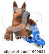 July 15th, 2018: Clipart Of A 3d German Shepherd Dog Riding A Scooter On A White Background Royalty Free Illustration by Julos