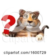 July 16th, 2018: Clipart Of A 3d Tabby Kitty Cat Holding A Question Mark On A White Background Royalty Free Illustration by Julos