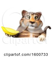 July 16th, 2018: Clipart Of A 3d Tabby Kitty Cat Holding A Banana On A White Background Royalty Free Illustration by Julos