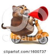 July 16th, 2018: Clipart Of A 3d Tabby Kitty Cat Riding A Scooter On A White Background Royalty Free Illustration by Julos
