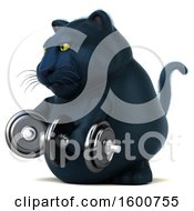 July 16th, 2018: Clipart Of A 3d Black Kitty Cat Working Out With Dumbbells On A White Background Royalty Free Illustration by Julos