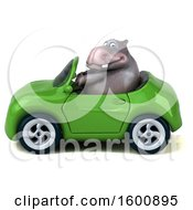 July 16th, 2018: Clipart Of A 3d Hippo Driving A Convertible On A White Background Royalty Free Illustration by Julos