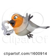 3d Robin Bird Holding A Lira Symbol On A White Background