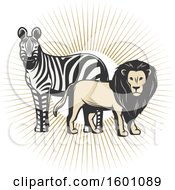 Clipart Of A Zebra And Male Lion Over Sun Rays Royalty Free Vector Illustration