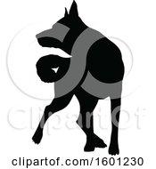 Silhouetted German Shepherd Dog