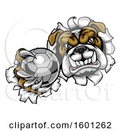 Tough Bulldog Monster Sports Mascot Holding Out A Soccer Ball In One Clawed Paw And Breaking Through A Wall