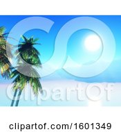 3d Tropical Sunny Landscape With Palm Trees