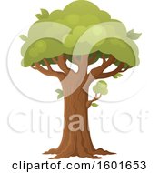 Clipart Of A Tree With A Green Canopy Royalty Free Vector Illustration