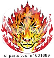 Poster, Art Print Of Flaming Tiger Mascot Head