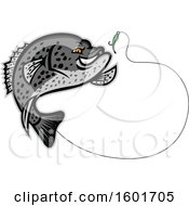 Clipart Of A Jumping Black Crappie Fish Mascot Going For A Fishing Hook Royalty Free Vector Illustration