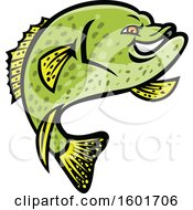 Jumping Tough Green Crappie Fish Mascot