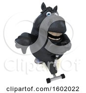 Clipart Of A 3d Chubby Black Horse Exercising On A Spin Bike On A White Background Royalty Free Illustration