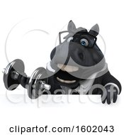 Clipart Of A 3d Chubby Black Business Horse Working Out With Dumbbells On A White Background Royalty Free Illustration
