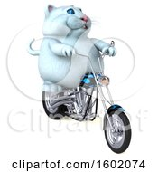 3d White Kitty Cat Biker Riding A Motorcycle On A White Background