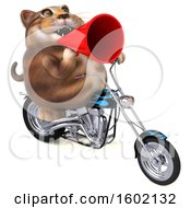 3d Tabby Kitty Cat Biker Riding A Motorcycle On A White Background