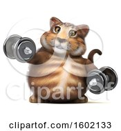 Clipart Of A 3d Tabby Kitty Cat Working Out With Dumbbells On A White Background Royalty Free Illustration by Julos