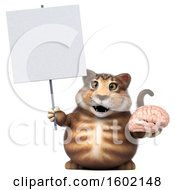 Clipart Of A 3d Tabby Kitty Cat Holding A Brain On A White Background Royalty Free Illustration by Julos