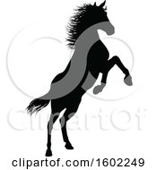 Clipart Of A Black Silhouetted Horse Rearing Royalty Free Vector Illustration
