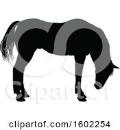 Clipart Of A Black Silhouetted Horse Royalty Free Vector Illustration