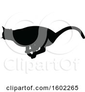 Black Silhouetted Cat Running