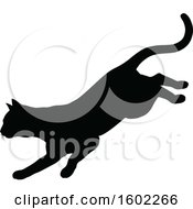 Black Silhouetted Cat Pouncing