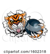 Clipart Of A Vicious Tiger Mascot Breaking Through A Wall With A Bowling Ball Royalty Free Vector Illustration by AtStockIllustration