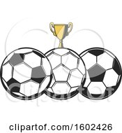 Trophy Cup And Soccer Balls