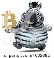 Clipart Of A 3d Zebra Holding A Bitcoin Symbol On A White Background Royalty Free Illustration by Julos