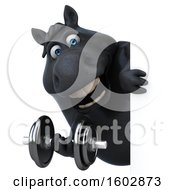 Clipart Of A 3d Chubby Black Horse Holding A Dumbbell On A White Background Royalty Free Illustration