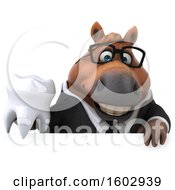 Poster, Art Print Of 3d Chubby Brown Business Horse Holding A Tooth On A White Background
