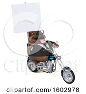 3d Business German Shepherd Dog Biker Riding A Chopper Motorcycle On A White Background