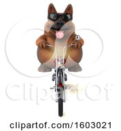 3d German Shepherd Dog Biker Riding A Chopper Motorcycle On A White Background