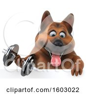 3d German Shepherd Dog Holding A Dumbbell On A White Background