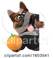 3d Business German Shepherd Dog Holding An Orange On A White Background