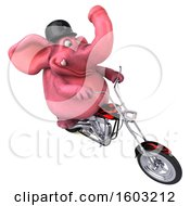 3d Pink Elephant Biker Riding A Chopper Motorcycle On A White Background