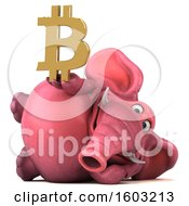 Poster, Art Print Of 3d Pink Elephant Holding A Bitcoin Symbol On A White Background