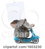 3d Elephant Riding A Scooter On A White Background
