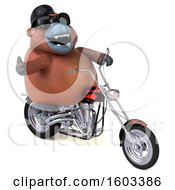 3d Orangutan Monkey Biker Riding A Chopper Motorcycle On A White Background