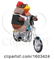3d Brown Business Chicken Biker Riding A Chopper Motorcycle On A White Background