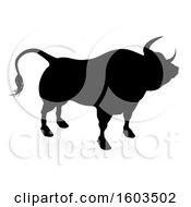Silhouetted Bull With A Reflection Or Shadow On A White Background