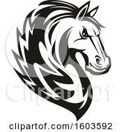 Poster, Art Print Of Black And White Tough Stallion Horse
