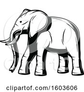 Poster, Art Print Of Walking Elephant In Black And White